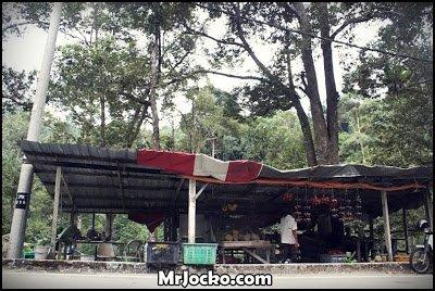 Misi mencari Durian Balik Pulau di Pulau Pinang