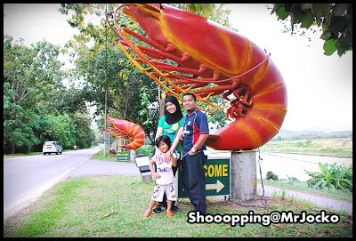 Shrimpz01
