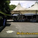 Lunch kat Tugu View Cafe Ayam Kampung