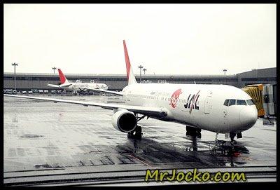 Lapangan Terbang Antarabangsa Narita Jepun