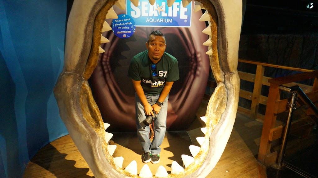 Sea_Life_Melbourne_Aquarium_10