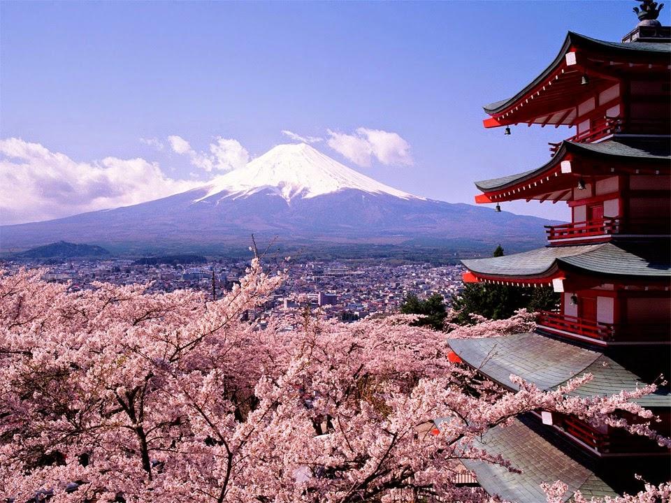 fuji-cherry-blossom-japan