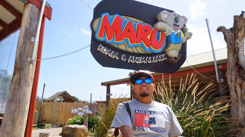 Maru Koala & Animal Park Phillip Island Zoo Persendirian