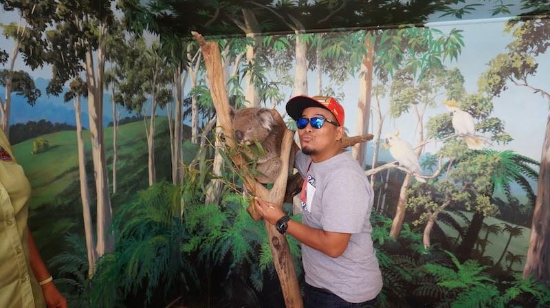 Maru Koala & Animal Park Phillip Island