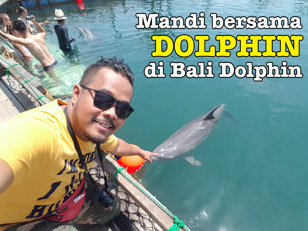 bali_dolphin_package_04-copy