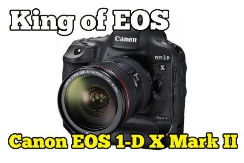 Canon Perkenal King Of EOS Di Kenali EOS 1D X Mark II