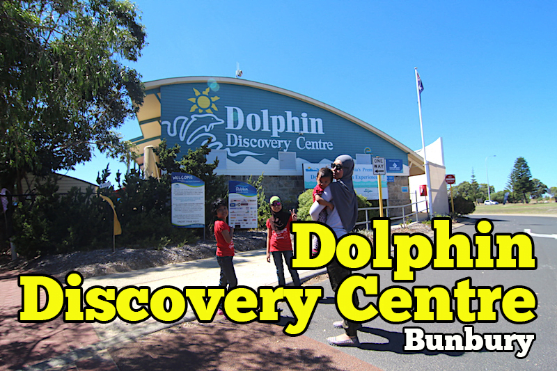 Pusat Ikan Lumba-Lumba Di Dolphin Discovery Centre Bunbury