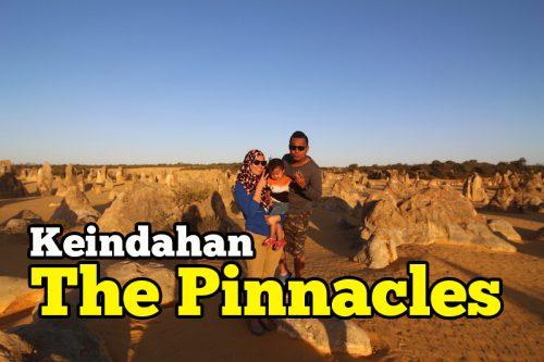 Keindahan The Pinnacles Desert Western Australia Yang Unik