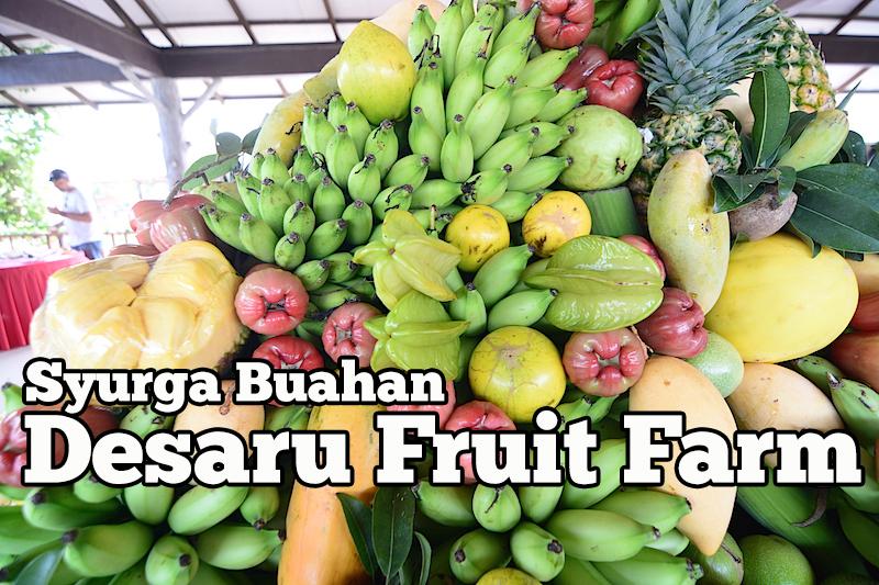 desaru-fruit-farm-johor-01-copy