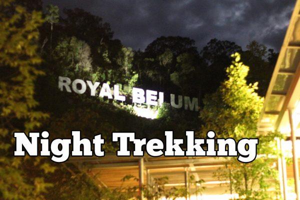 Royal Belum Night Trekking Package