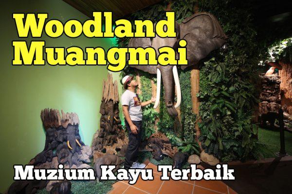 Woodland Muangmai Muzium Kayu Terbaik Wajib Lawat
