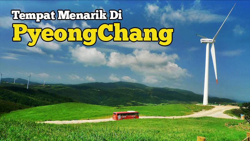 tempat-menarik-di-pyeongchang-Samyang-Ranch