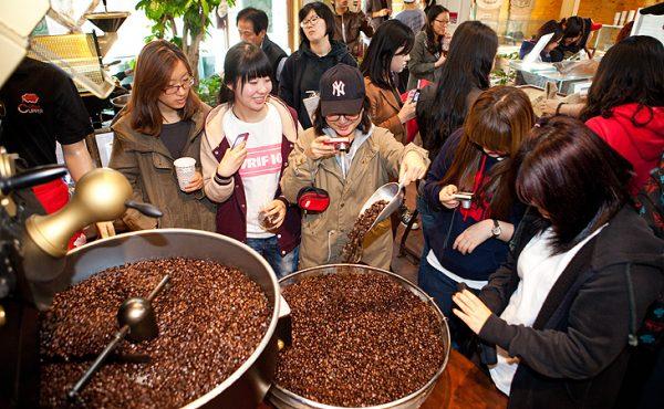 festival coffee gangneung