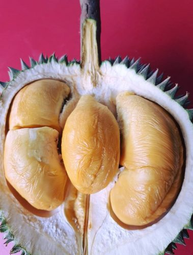 durian-king-ttdi-kuala-lumpur