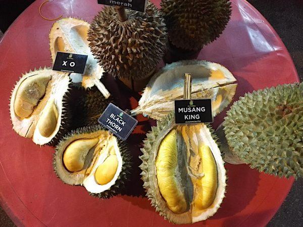 durian king ttdi harga