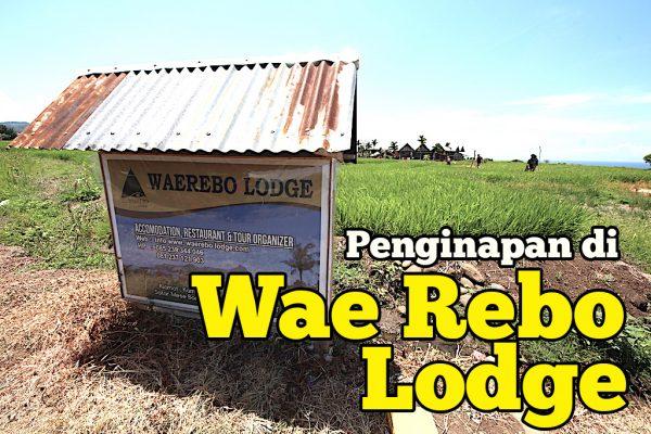 Penginapan Di Wae Rebo Lodge Sederhana Tetapi Terbaik