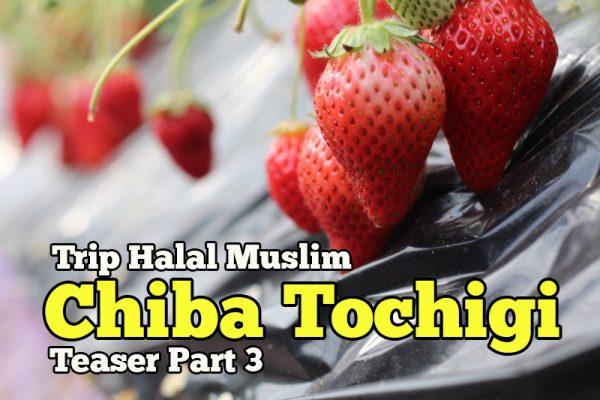 Pengalaman Trip Halal Muslim Chiba Tochigi Japan Teaser Part 3 Hari Ketiga
