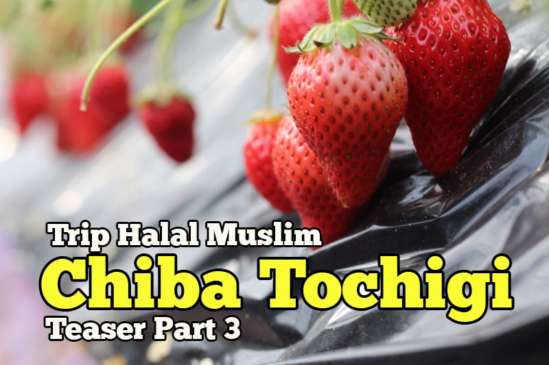 Trip-Halal-Muslim-Chiba-Tochigi-Japan-Teaser-Part-3-Hari-Ketiga-07-copy