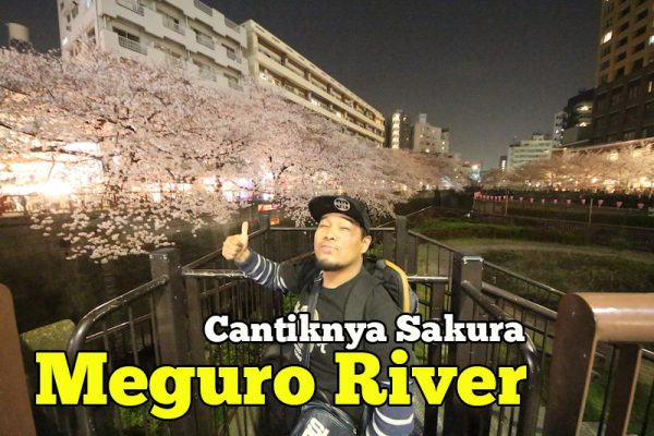 Cantiknya Meguro River Sakura Tokyo Tempat Wajib Lawat