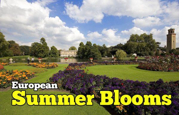 Lawati European Summer Blooms Dengan Penerbangan British Airways