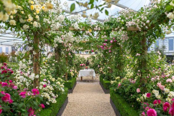 European Summer Blooms