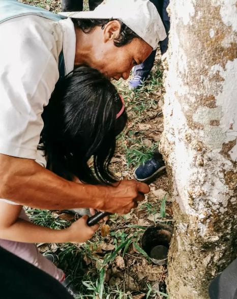 Menoreh Getah Pakej Penginapan AirBNB Malaysia dan Aktiviti Pilihan Terbaik Musim Raya