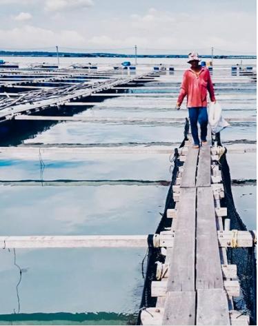 Kelong Ikan Pakej Penginapan AirBNB Malaysia dan Aktiviti Pilihan Terbaik Musim Raya