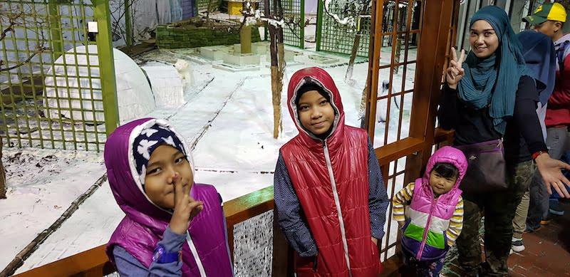 Rumah Iklim Sederhana Empat Musim
