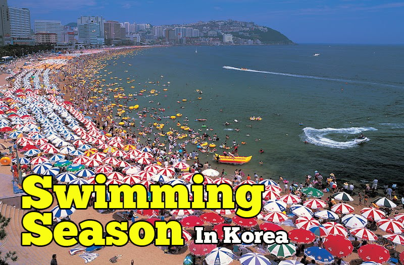 swimming-season-korea-01-copy