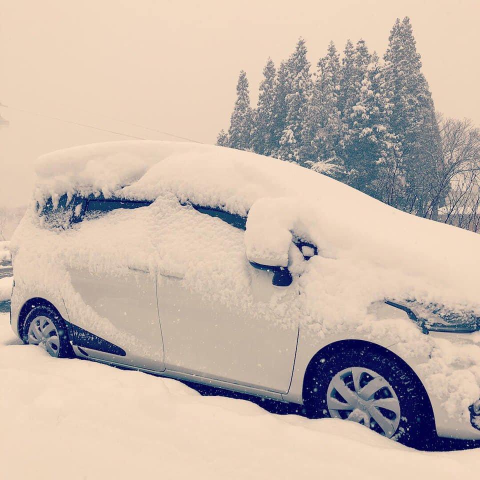 salji mula turun di Jepun