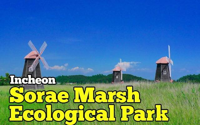 Sorae Ecological Park