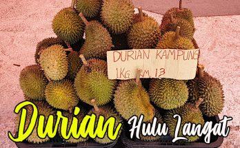 Gerai Durian Hulu Langat 02