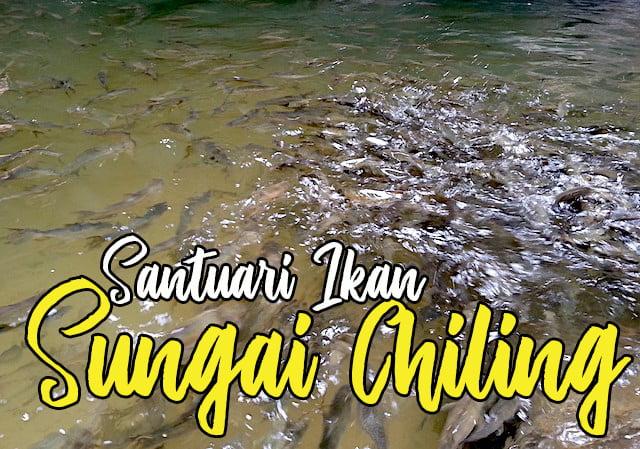 Santuari-Ikan-Sungai-Chiling-Hulu-Selangor-03-copy
