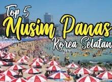 musim-panas-di-korea-selatan-summer-Haeundae-Beach-copy