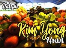 kim_yong_market_hatyai_thailand_03-copy