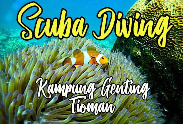 Pengalaman+Scuba+Diving+Di+Kampung+Genting+Pulau+Tioman+05 copy