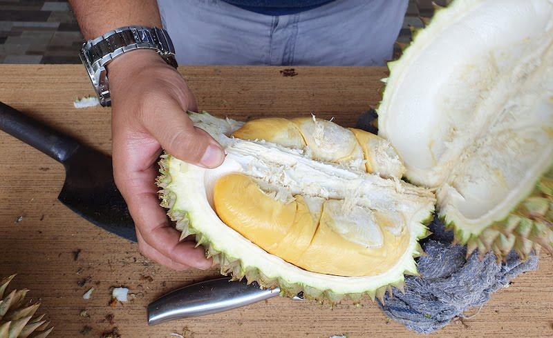 Makan Durian Bukit Jalan Tapah Cameron Highlands 03