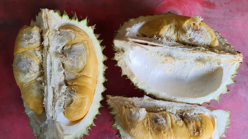 Makan Durian Bukit Jalan Tapah Cameron Highlands 04