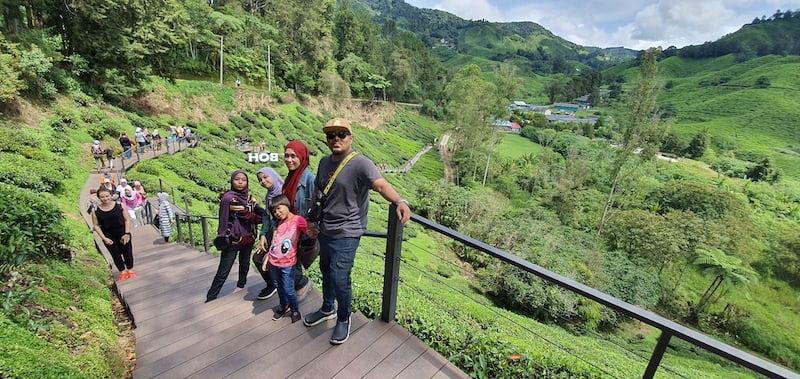 Masuk Percuma Ke BOH Sungai Palas Tea Centre 02