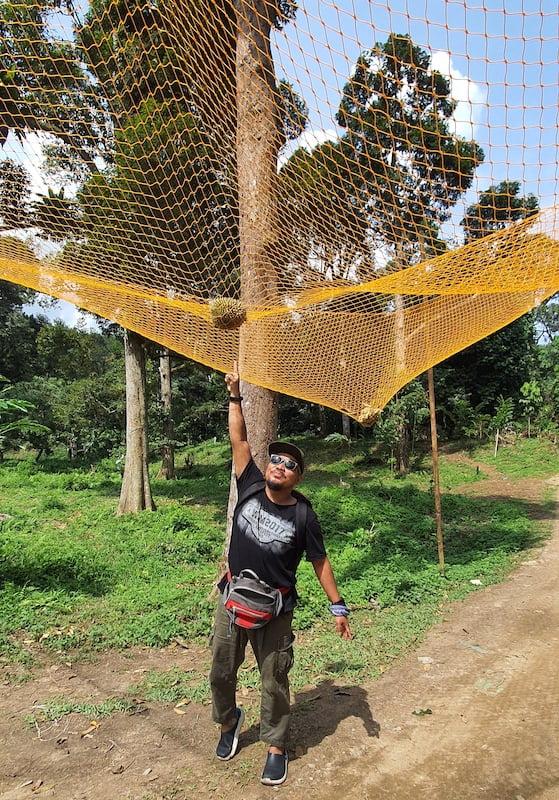 Pakej Day Trip KL Batu Kurau Makan Durian Kampung 04