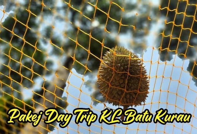 Pakej Day Trip KL Batu Kurau Makan Durian Kampung 05 copy