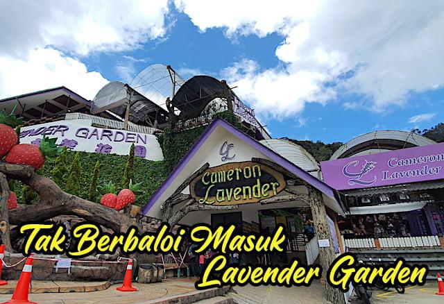 Tiket-Masuk-Cameron-Lavender-Garden-Brinchang-Pahang-01 copy